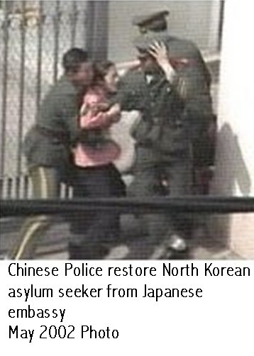 north korea6